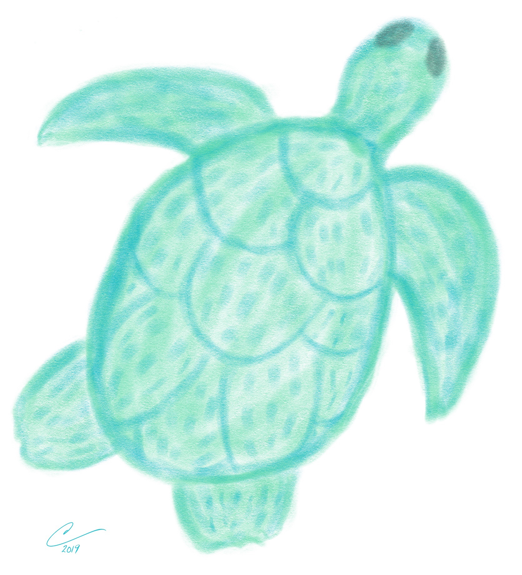 Sketch of a blue green sea turtle